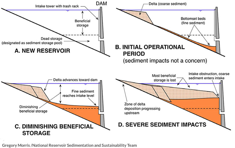 Sedimentation Diagram